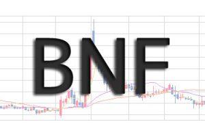 BNF氏の投資手法をまとめ!見えてきた株のやり方から学ぶ!