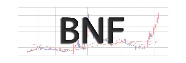 BNF氏の投資手法まとめ